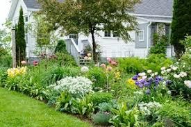 garden planning getting started