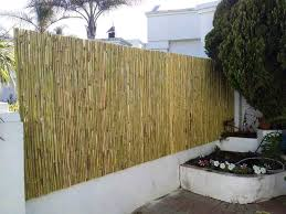 Wattle And Bamboo Fencing Panels Constantia Kloof Gumtree Classifieds South Africa 521790206