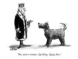 Dogs New Yorker Cartoons Picture, Prints, Paintings & Wall Art for Sale |  AllPosters.com