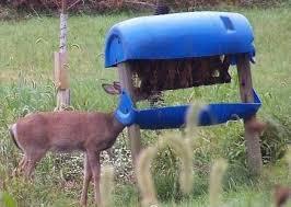 homemade deer feeder diy ideas