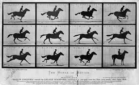 File:The Horse in Motion high res.jpg - Wikimedia Commons