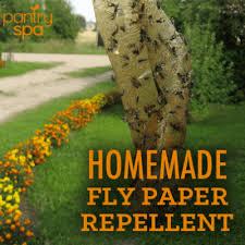 diy flypaper