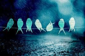 listen to relaxing rain sounds