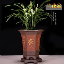 yixing boutique purple sand orchid