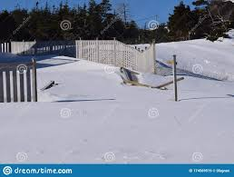 Garden Fence Damaged By Wind Stock Image Image Of Heavy Snowfall 174569519