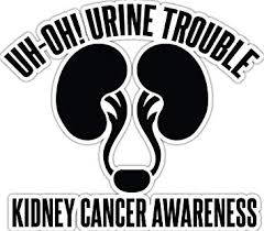 Amazon Com 4 All Times Uh Oh Urine Trouble Kidney Cancer Awareness Automotive Car Decal For Cars Trucks Laptops 12 0 W X 10 6 H Automotive