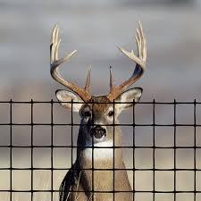 Deer Fence Premium Deer Elk Fence Tenax