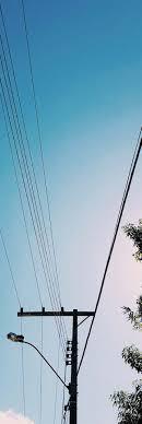 JEA - A TREE LINE USA®