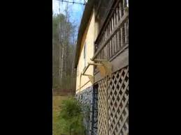 Installing A Purrfect Fence System Done Petloverstribe Tagtribes Perigirls Youtube