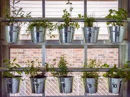 hanging herb garden ideas to grow
