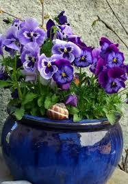 92 best images about glazed garden pots