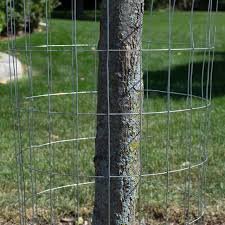 Galvanized Welded Wire Mesh Cage Fence 14 Gauge Many Sizes Mesh Options
