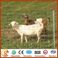 Goat Fence Lowes Goat Fence Lowes Suppliers And Manufacturers At Alibaba Com
