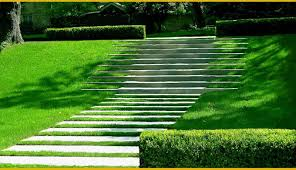 david wilson garden design