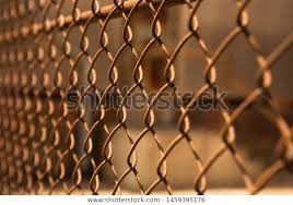 Wall Bars Wire Fence Protection Wall Parks Outdoor Stock Image 1459395176