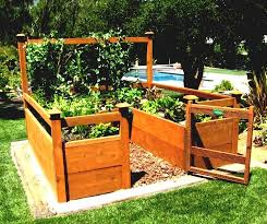 tripped gardening bed with lush