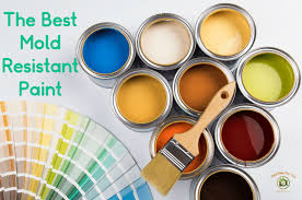 the best mold resistant paint mold