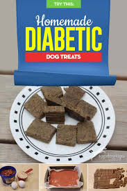 homemade diabetic dog treat recipe and