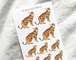Bengal Cat Sticker Etsy