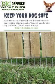 Dog Fence Easy To Install Humane Super Effective Get The Dig Defmence Solution For Keeping Dogs Safe And In Digging Dogs Dog Fence Stop Dogs From Digging