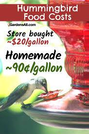 homemade hummingbird food er