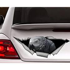 Amazon Com African Grey Car Decal Vinyl Decal Parrot Decal Bird Decal Parrot Sticker 11x4 Inch Home Kitchen
