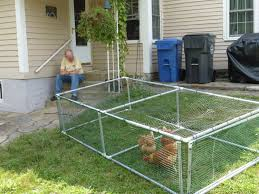 Do They Make A Cheap Non Electric Movable Poultry Fencing Page 2 Backyard Chickens Learn How To Raise Chickens