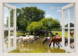 Horses Wall Decal 3d Window Wall Decal Window Frame Wall Etsy