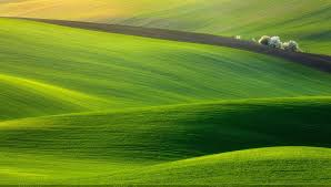 50 beautiful nature wallpapers for your