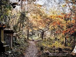 Abney Park Cemetery   Attractions in Stoke Newington, London