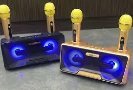 Loa bluetooth Karaoke SDRD SD301 kèm 2 mic không dây [BH: 3 tháng] zxc#1B6