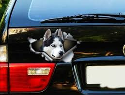 Black And White Husky Car Decal Car Decoration Car Sticker Etsy