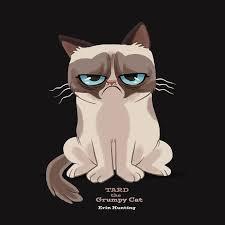 grumpy cat wallpaper hd grumpy cat