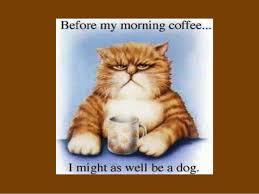 resources coffee humor on tumblr