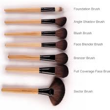 diffe types of makeup brushes with
