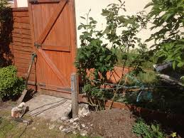 Here We Have Installed A Concrete Spur To Act As A Splint On A Broken Fence Post Fence Post Repair Fence Fence Post