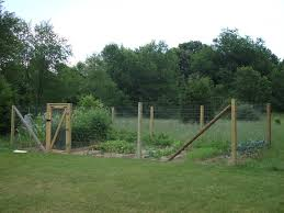 Fence For Home Gardens Using Fencing Wire Chicken Netting The Country Basket