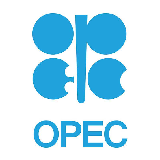 Organization of the Petroleum Exporting Countries (OPEC) Job Recruitment