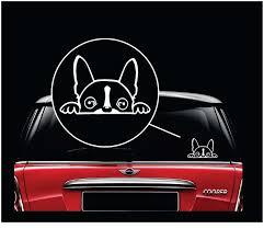 Boston Terrier Peeking Dog Vinyl Decal Stickers Sticker Flare Llc