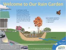 resource library 12 000 rain gardens