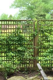 Diy How To Build A Beautiful Square Lattice Fence For Privacy Lehman Lane