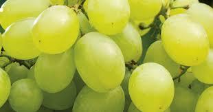 Le raisin de table | Transgourmet