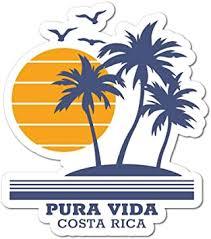 Amazon Com Pura Vida Costa Rica Sticker Decal Palm Trees Sun Island Paradise Automotive