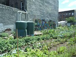 phoenix community garden grownyc