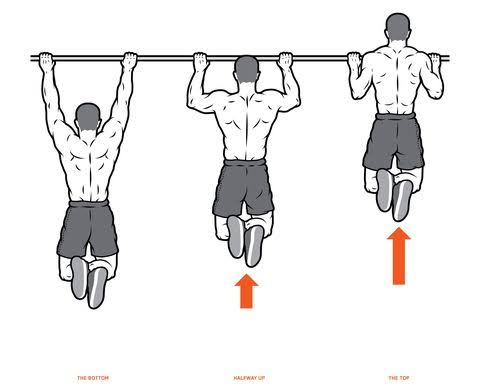 """Image result for Pull-ups"""""""