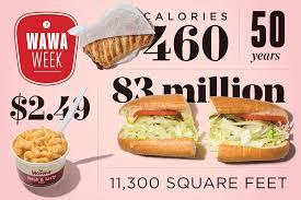 ridiculous amount of wawa trivia