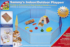 Best Hamster Playpens Reviewed By Squeaks And Nibbles