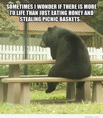Funny picnic Memes