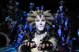 Going to see Cats in Dubai this weekend? Read this first ...