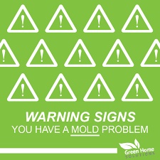 warning signs you have a mold problem